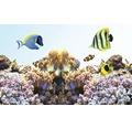 Akvarielysrör JUWEL High-Lite® Nature 1047mm 54W