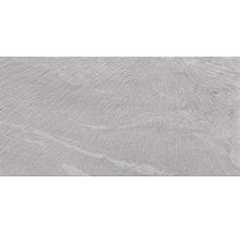 Klinker Silverstone Grigio Chiaro 30x60 cm