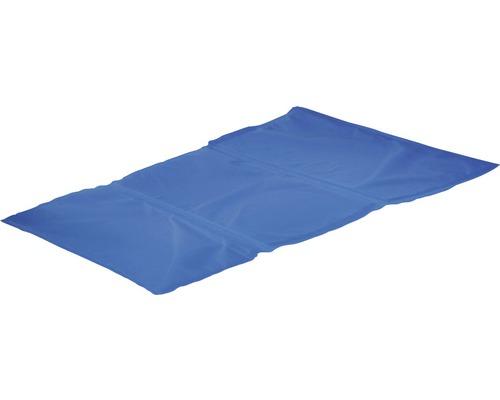 Kylmatta KARLIE Fresk 40x50cm blå