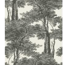 Tapet RASCH Träd svart vit
