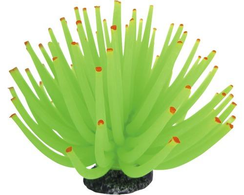 Akvariedekoration Smiling Coral grön 13cm