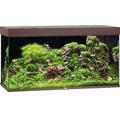 Akvarium JUWEL Rio 350 LED mörkt trä underskåp ingår ej