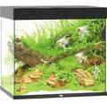 Akvarium JUWEL Lido 200 LED svart utan underskåp