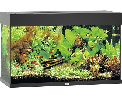 Akvarium JUWEL Rio 125 LED svart underskåp ingår ej