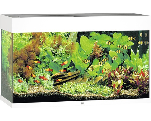 Akvarium JUWEL Rio 125 LED vit underskåp ingår ej