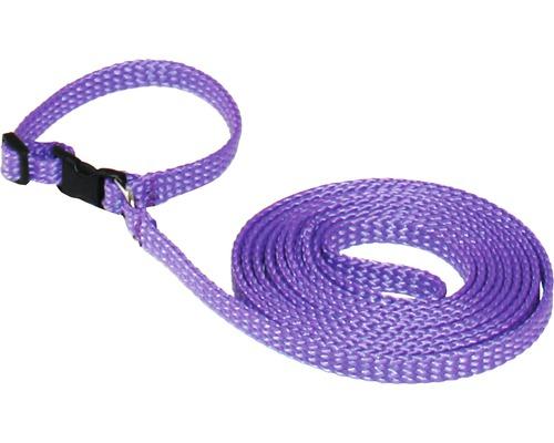 Koppel/Halsband valpset 22-34cm lila