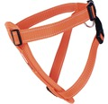 Hundsele S 6-10kg orange
