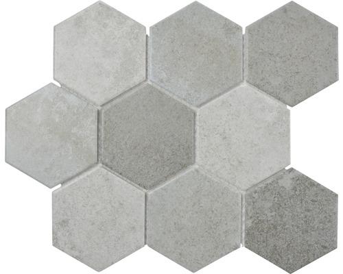 Mosaik CIM HX9 CM Hexagon Cement mix 25,6x29,5 cm