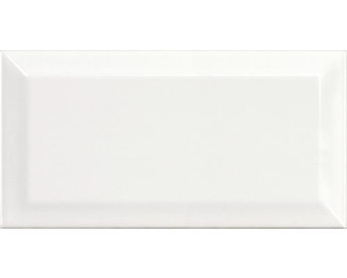 Kakel vit fasad 10x20 cm