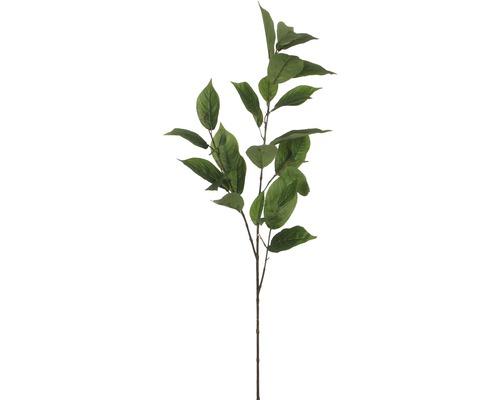 Konstväxt MICA Kvist grön 113cm