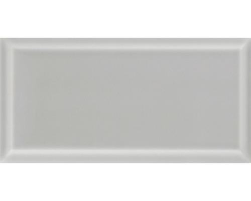 Kakel grå fasad kant blank 9,8x19,8 cm