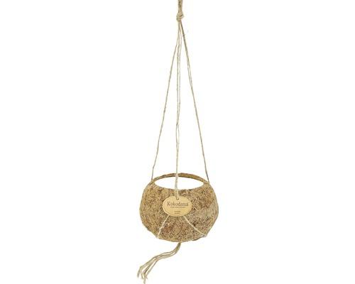 Ampelkruka kokedama kokos Ø12x7,5cm brun