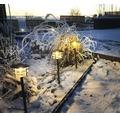 Trädgårdsbelysning Poppy LED 3-pack komplett 2700 K