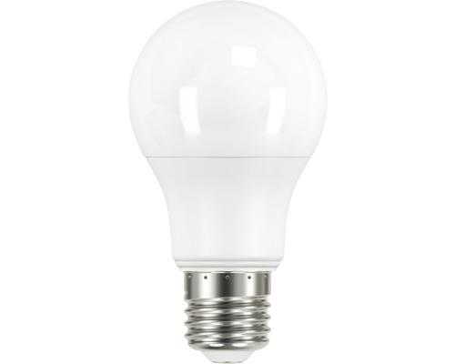 FLAIR LED normallampa A60 E27 8,5W matt 806 lm 2700 K varmvit