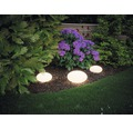 Trädgårdsbelysning PAULMANN Stone Plug & Shine 2,8W 160lm 3000K HxØ 166x280mm IP67 230/24V vit