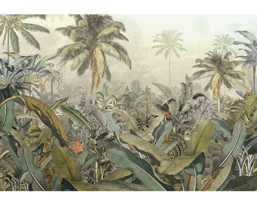 Fototapet Amazonia 4 delar 368 x 248 cm