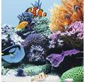 Akvarielysrör JUWEL High-Lite Blue 895mm / 45W