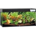 Akvarium JUWEL RIO 240 LED svart underskåp ingår ej