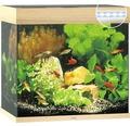 Akvarium JUWEL Lido 120 LED ljust trä underskåp ingår ej