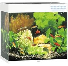 Akvarium JUWEL Lido 120 LED vit underskåp ingår ej