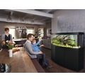 Akvarium JUWEL Vision 450 LED svart