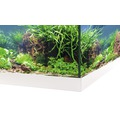 Akvarium EHEIM Aquastar 54 LED vit