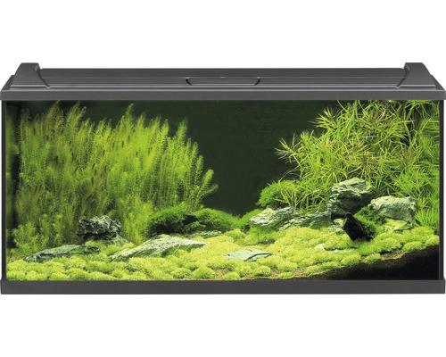 Akvarium EHEIM Aquapro LED 180 med LED-belysning, värmare, filter, fångnät, termometer, foder utan underskåp svart