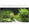 Akvarium EHEIM Aquapro LED 126 med LED-belysning, värmare, filter, fångnät, termometer, foder utan underskåp vitt