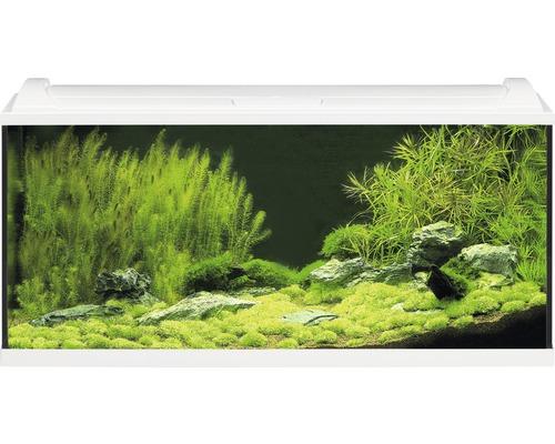 Akvarium EHEIM Aquapro LED 180 med LED-belysning, värmare, filter, fångnät, termometer, foder utan underskåp vitt