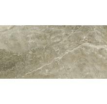 Klinker Stone Mud gloss 30x60 cm rektifierad