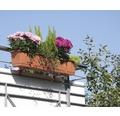 Blomlåda GELI standard plast 40x17x14cm terrakotta
