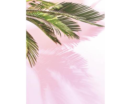 Poster Palm Leaf 30x40cm
