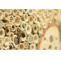 Insektshotell spetsigt tak 19x9,5x22cm natur