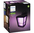 Vägglykta PHILIPS Hue Econic white and color ambiance 15W 1150lm IP44 svart
