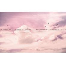 Fototapet KOMAR Cloud Wire Natur