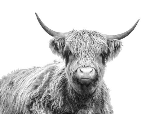 Canvas THE WALL Highlands 100x150cm