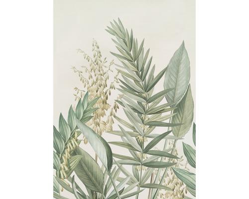 Fototapet Cosy Balance Palm Lily