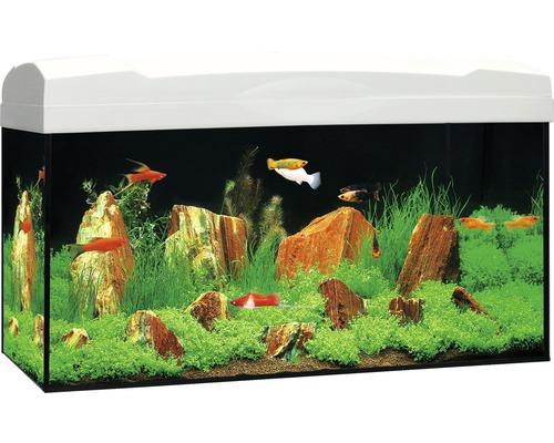 Akvarium MARINA Complete 54 inkl. LED-belysning, filter, värmare, foder vit