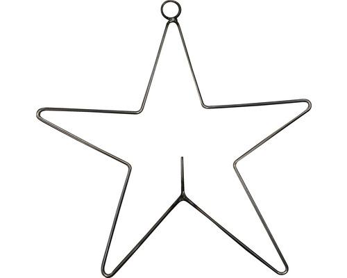 Fågelmatare stjärna 25cm