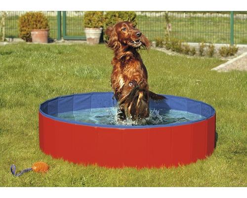 Hundpool KARLIE Doggy pool 120x30cm röd/blå