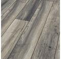 Laminatgolv KRONOTEX Harbour Oak grå ek