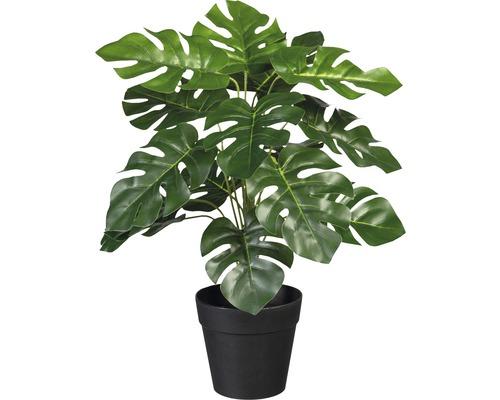 Konstväxt split-filodendron i kruka 32cm grön