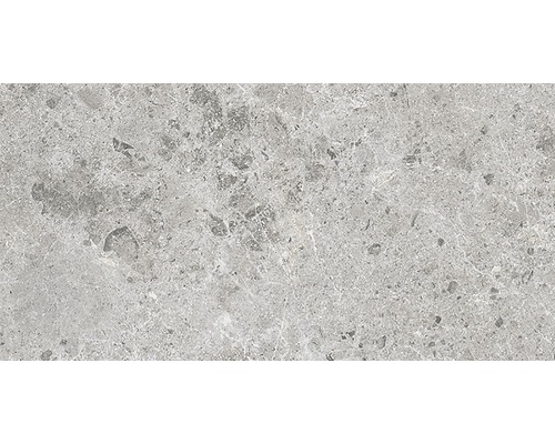 Klinker Sarite Stone 30x60cm grå