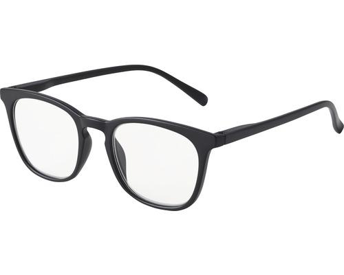 Skydds- läsglasögon Amsterdam svart +2