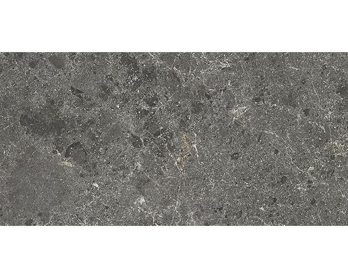 Klinker Sarite Stone 30x60cm svart