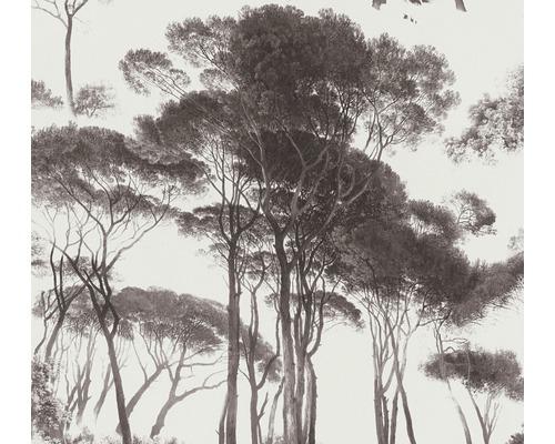 Tapet A.S. CRÉATION History of art träd mörkgrå beige 37651-1