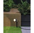 Trädsgårdsspot EGLO Nema 1 Crosslink LED RGBW GU10 5W 400lm 2700 - 6500K H245mm IP44 svart