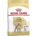 Hundmat ROYAL CANIN Poodle 7,5kg