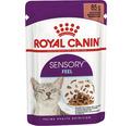 Kattmat ROYAL CANIN FHN Sensory Feel 12x85g