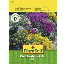 Blomfrö FLORASELF Stenträdgårdsmix